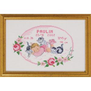 Image of   Permin Broderikit Aida Fødselstavle Paulin 29x19cm