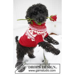 Valentino by DROPS Design - Hundebluse Strikkeopskrift str. XS - L