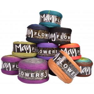 Mayflowers 3